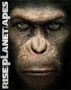 猿.jpeg